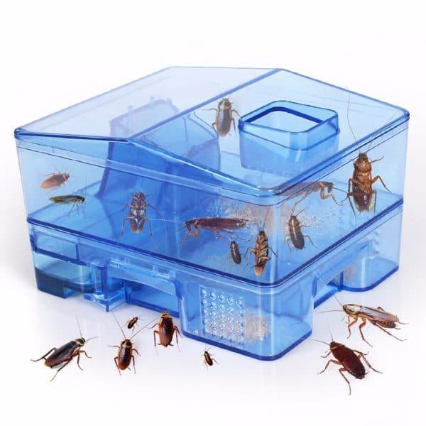 Reusable-Plastic-Cockroach-Traps-Box